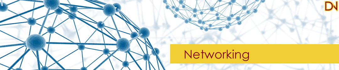 DNCS Networking Services